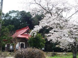 0411 花まつり01