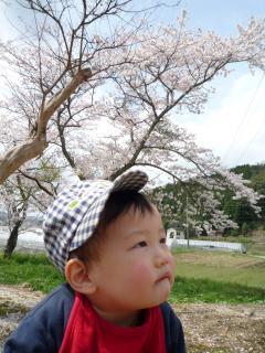 0411 花まつり02