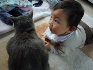 100424 おネコさまと01