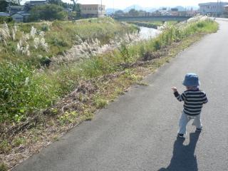 101113 お散歩04