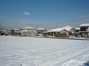 110101 雪03