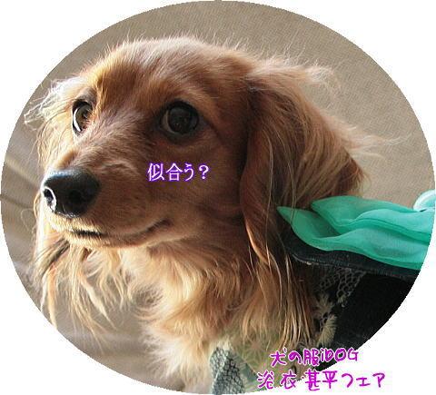 adeyaka5.jpg
