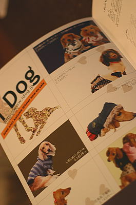 df1.jpg
