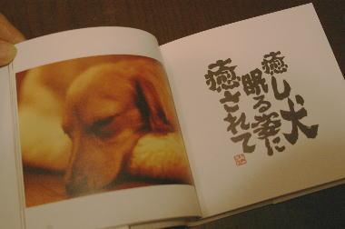 inudamono1.jpg