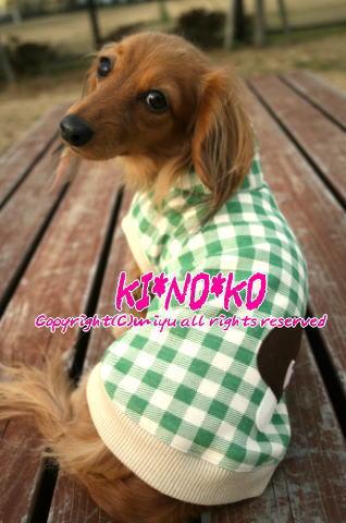 kinoko3.jpg
