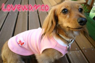 lovewanco2-1.jpg