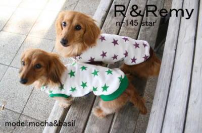 remyblog10.jpg