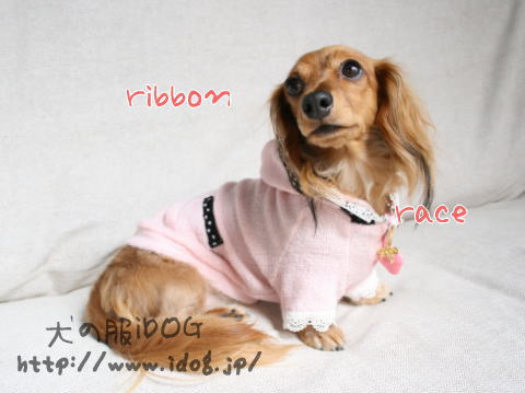 ribbon4.jpg