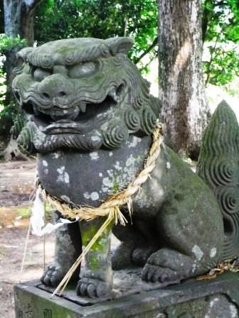 日枝神社赤木1
