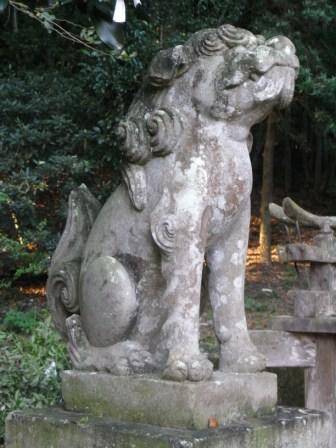 温泉熊野神社杉6