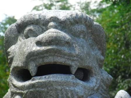 須賀神社植木2