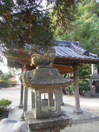 温泉熊野神社杉3