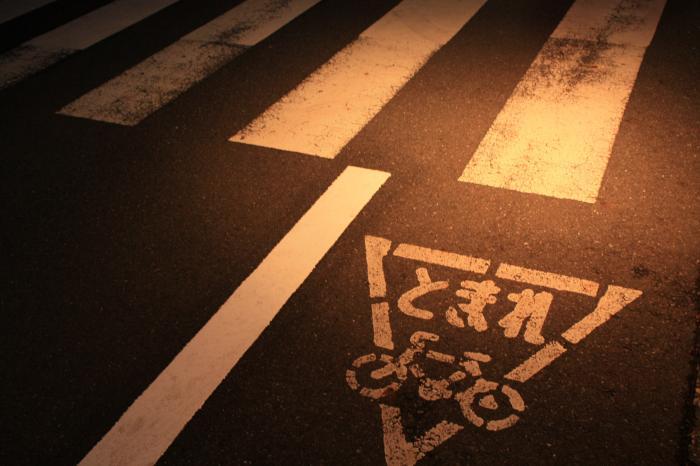 IMG_1173_convert_20090119193651.jpg