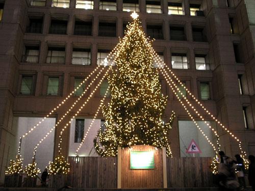 市役所のツリー