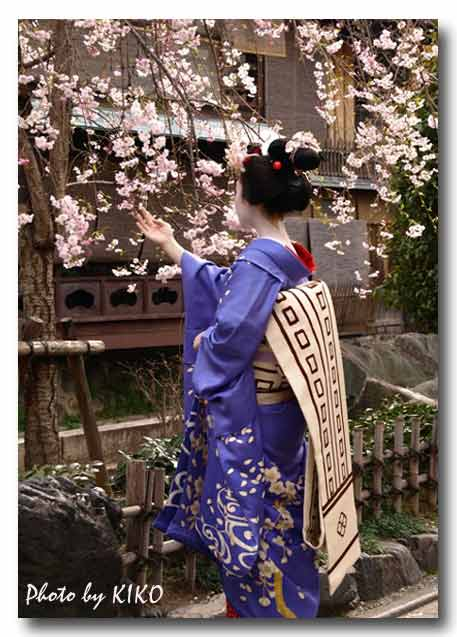 祇園白川で