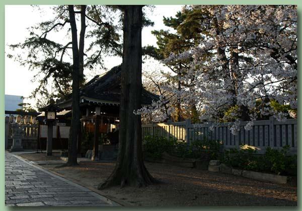 朝の阿倍野神社