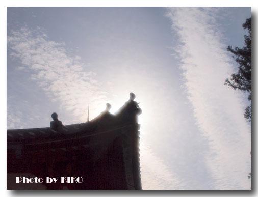 早朝の東大寺
