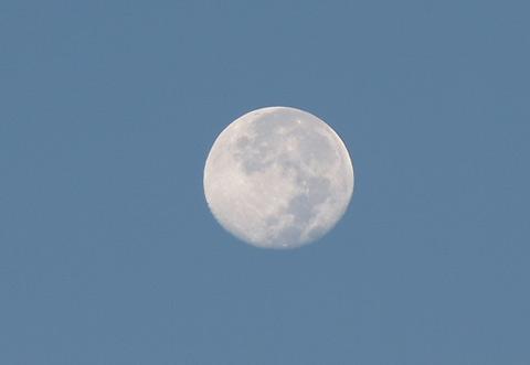 今朝のお月様