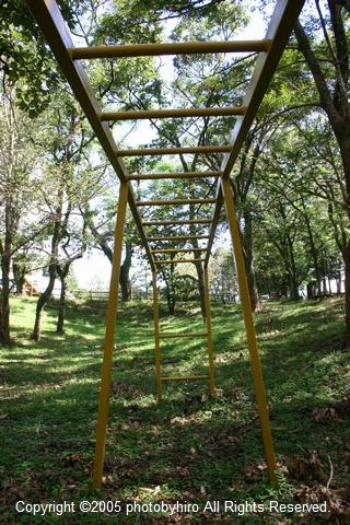 雲梯(うんてい) 廃校跡の思い出
