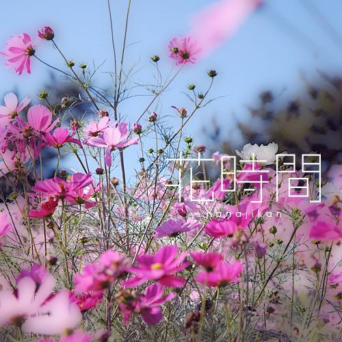 kazu419.jpg