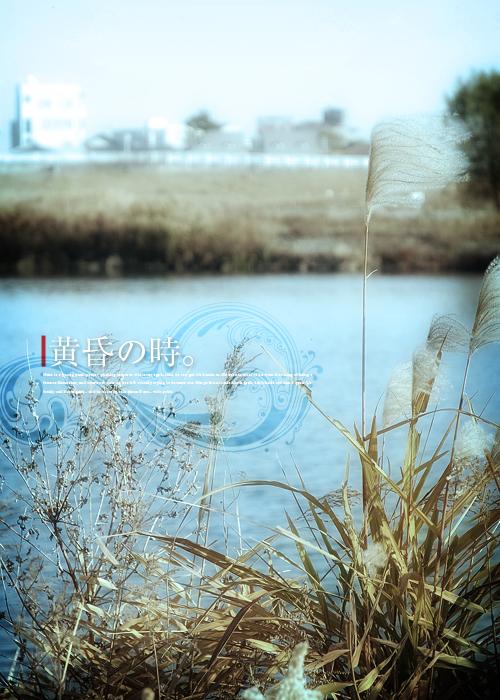 kazu558.jpg