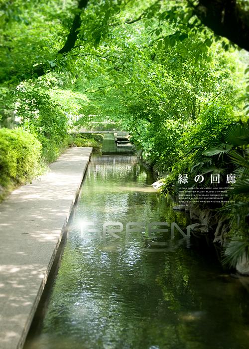 kazu597.jpg