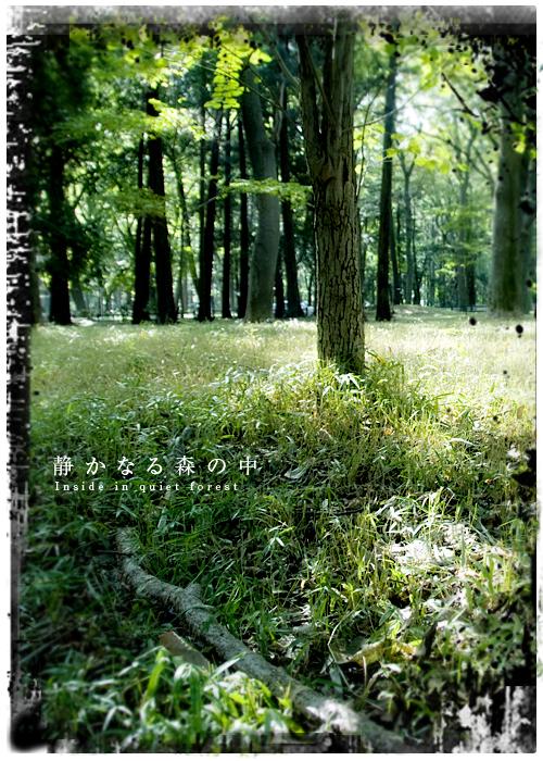 kazu678.jpg
