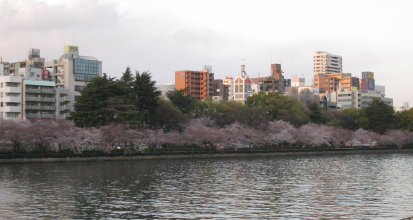 桜 天満橋