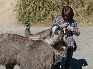 掛川花鳥園17