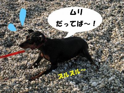 umi7.jpg