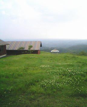 20060620-3.jpg