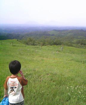 20060620-5.jpg