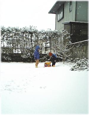 20070202-3.jpg