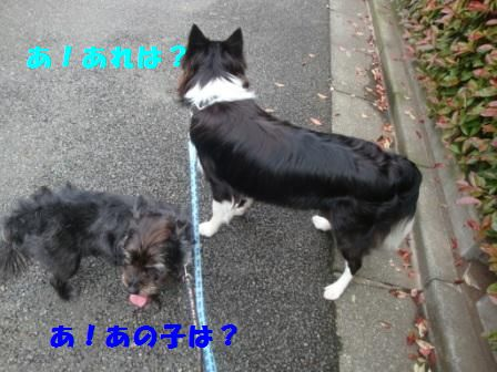 sanpo8.jpg