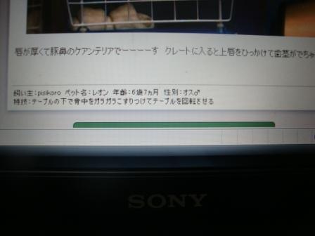 tokei5.jpg