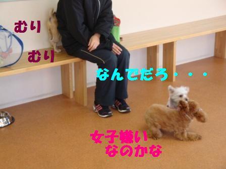 yasuko5.jpg