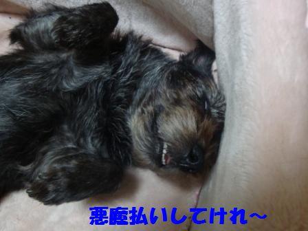 yuki7.jpg