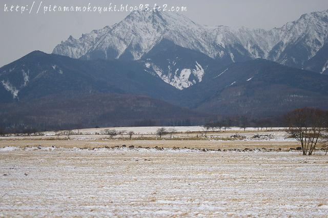 八ヶ岳100101_1