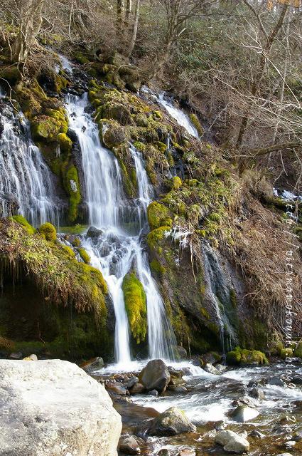 吐竜の滝100101_1