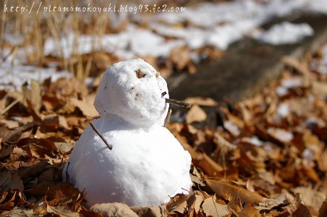 雪だるま100101_1