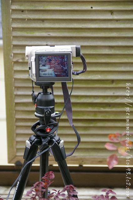 ビデオカメラ091229_1