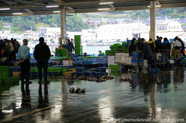魚市場100501_1