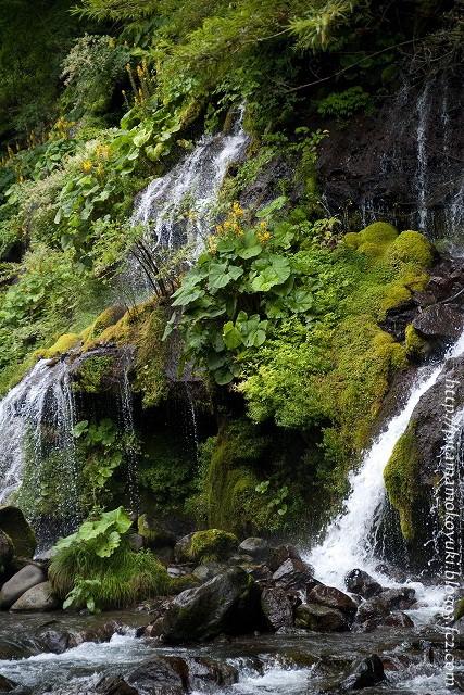 吐竜の滝100823_3