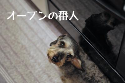 DSC_5090のコピー
