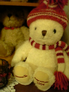 bear1113.jpg
