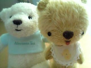bear1117.jpg
