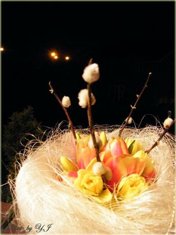 tulipa-daf-bouquet1
