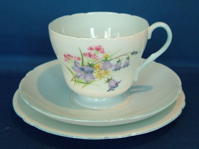 blubell-shelley-cup