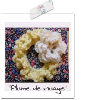 plume1204.jpg