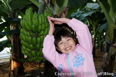 banana0809c_eip.jpg